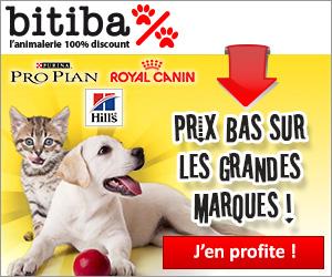 Bitiba.fr cashback