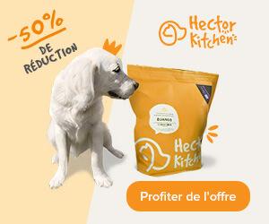 Hector Kitchen cashback