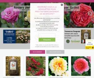 Roses Guillot cashback